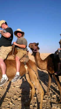 Camel riding in the Negev