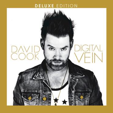 David Cook Digital Vein